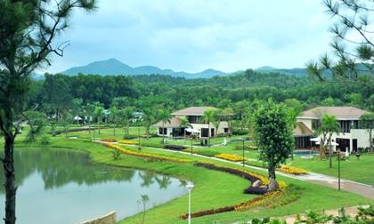 Những địa điểm du lịch 'xát xịt' Hà Nội không thể bỏ lỡ trong dịp Tết Nguyên đán 2020
