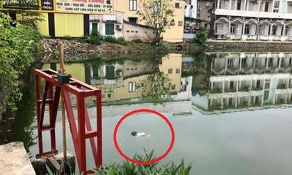 Tá hỏa phát hiện thi thể nam giới chết bất thường giữa hồ sáng 30 Tết
