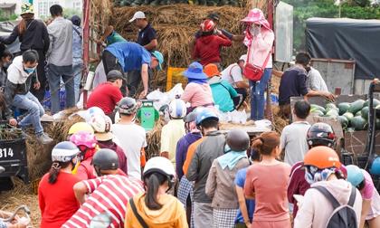 Xếp hàng mua dưa hấu, thanh long hỗ trợ nông dân ở TP.HCM