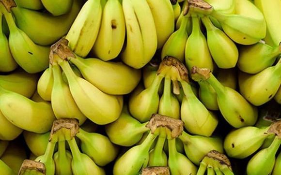 '. Nếu có dạ dày yếu, bạn nên ăn ít đi 2 quả vàng và ăn nhiều hơn 2 loại rau xanh .'