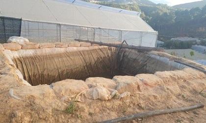 2 anh em chết đuối thương tâm trong hồ chứa nước tưới rau ở Đà Lạt