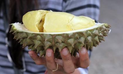Món ăn đại gia: Có gì bên trong Vua sầu riêng 1,1 tỷ đồng?
