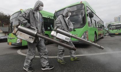 Hàn Quốc tăng kỷ lục 594 ca nhiễm virus corona, thêm 3 ca tử vong ở Daegu