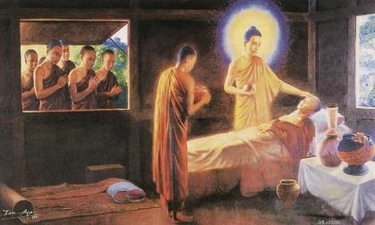 Phật dạy đời người có 4 thứ quả báo, tạo nhân gì thì sẽ gặt hái quả đó