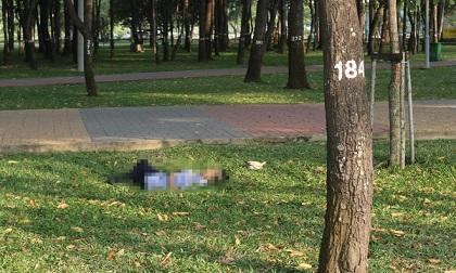 Người đàn ông tử vong trong công viên ở TP.HCM