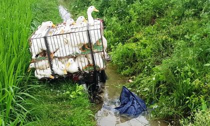Phát hiện người đàn ông tử vong dưới mương nước bên chiếc xe máy chở đầy vịt