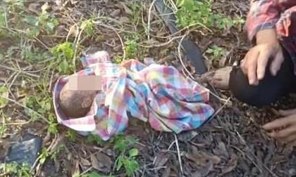 Bé gái còn nguyên dây rốn bị bỏ rơi giữa vườn và lời khai của người mẹ