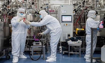 Việt Nam tiếp tục thử nghiệm đợt 2 tiêm vắc xin ngừa Covid-19 trên chuột