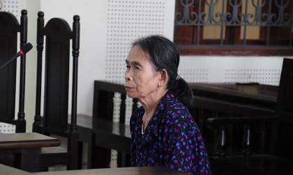 Bà nội sát hại cháu 11 tuổi lãnh 12 năm tù