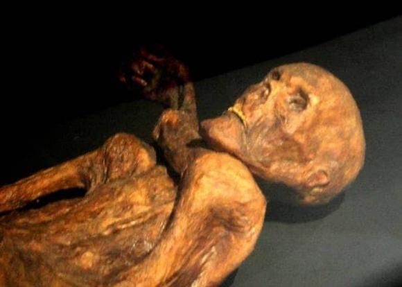 Người băng Otzi: Xác ướp lâu đời nhất của loài người từng được tìm thấy và bí ẩn lời nguyền đáng sợ đoạt mạng 7 người - 1