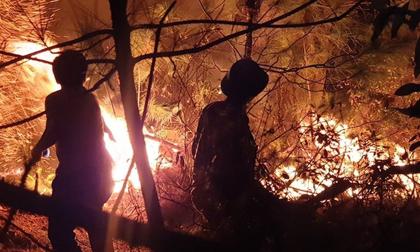Nghệ An: Liên tiếp xảy ra cháy rừng, hàng nghìn người xuyên đêm chữa cháy