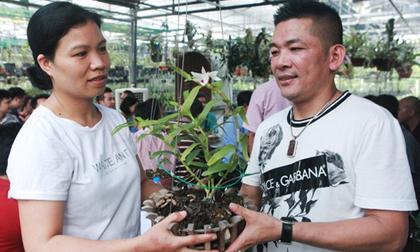 Danh tính đại gia Hà thành chi hẳn 5 tỷ mua bông hoa nhìn như rau muống