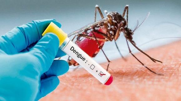 Ca sốt xuất huyết tại Hà Nội tăng mạnh: Bộ Y tế đưa ra những khuyến cáo phòng ngừa bệnh ở ngay tại nhà