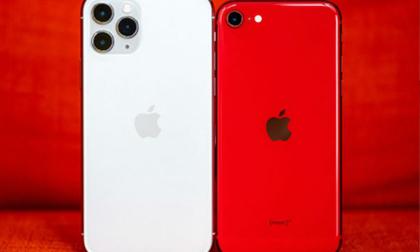 Mẫu iPhone giảm giá nhiều nhất ở Việt Nam
