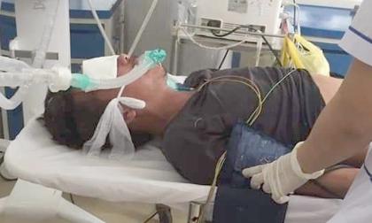 Nọc độc rắn hổ mang chúa 4,6kg ở núi Bà Đen đã dần thua 'sức chiến đấu' của nạn nhân