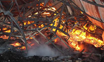 Bình Định: Cháy lớn tại xí nghiệp gỗ rộng hơn 28.000m2, lô hàng chuẩn bị xuất khẩu bị thiêu rụi