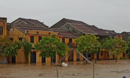 Miền Trung mưa lớn gây ngập, phố cổ Hội An 'thất thủ'
