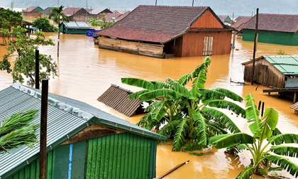 Nước lũ dâng tận nóc nhà dân Quảng Bình