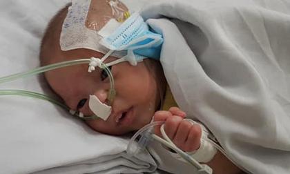 TP.HCM: Bé trai sơ sinh suy hô hấp, nhiễm trùng huyết bị mẹ bỏ rơi tại bệnh viện đã được gia đình đến nhận lại