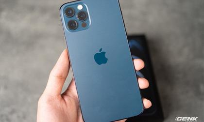 Nhà bán lẻ Việt Nam ngừng nhận cọc iPhone 12