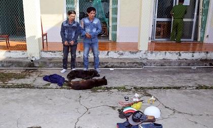2 kẻ trộm chó chống trả lực lượng truy bắt