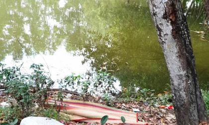 Bà mải làm việc nhà, 2 bé gái 3 tuổi rơi xuống hồ nước tử vong