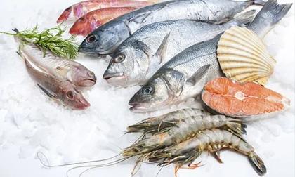 Chuyên gia dinh dưỡng chia sẻ: Sai lầm khi cho trẻ ăn hải sản dễ gây hại sức khỏe