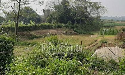 Đôi nam nữ tử vong bất thường trong lều cá giữa cánh đồng ở Bắc Giang