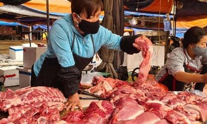 Giá thịt lợn hơi lại bắt đầu tăng trở lại