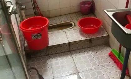 4 mẹ con bỗng nhiên đột tử, 'thủ phạm giết người' có thể nằm ngay trong phòng tắm của các gia đình mà không biết