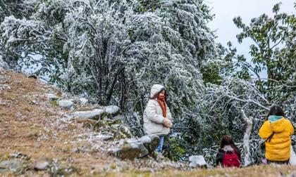 Không khí lạnh cường độ mạnh tràn về, khả năng xảy ra băng giá, mưa tuyết