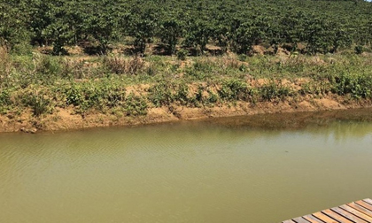 Bé gái đuối nước dưới hồ ở Lâm Đồng