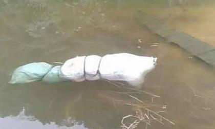 Nóng: Phát hiện thi thể phụ nữ bị buộc chặt trong bao tải dưới hồ - Công an đang điều tra