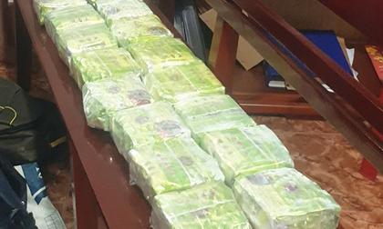 Triệt phá đường dây vận chuyển 20kg ma túy ở Đồng Nai