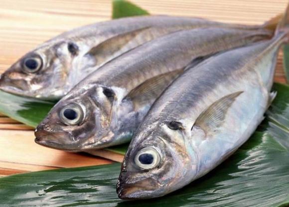 Cá biển dễ chứa nhiều thủy ngân không nên cho bé ăn nhiều
