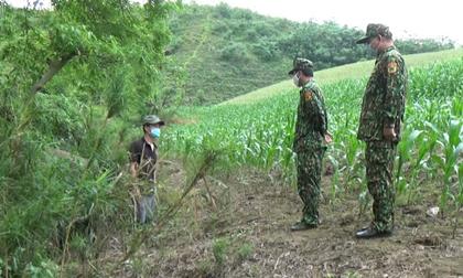 Thành viên tổ kiểm soát biên giới theo dõi bộ đội biên phòng để tiếp tay đưa người nhập cảnh trái phép, 91 vụ trót lọt