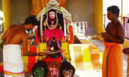 Dân Ấn Độ tạo ra 'nữ thần virus corona': Hàng ngày cúng bái, dâng thức ăn để đẩy lùi đại dịch