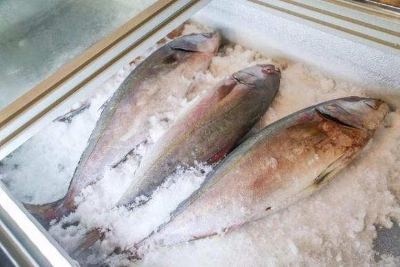 3 loại cá là bể chứa chất gây ung thư và kim loại nặng tuyệt đối đừng nên mua, nhưng nhiều người không biết vẫn ăn hàng ngày - Ảnh 2.