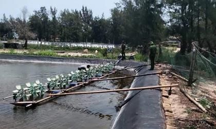 Bình Định: Cha ngã quỵ khi phát hiện 2 con gái chết đuối dưới hồ nuôi tôm của gia đình