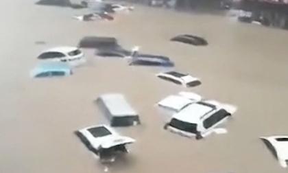 Trung Quốc: Mưa lớn '5.000 năm mới gặp 1 lần', Thiếu Lâm Tự đóng cửa, ô tô 'trôi trên đường như há cảo'