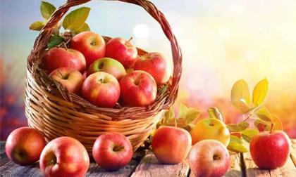 Top 6 thực phẩm tốt cho đường ruột, tận dụng được 1 loại là mang về cả tá lợi ích quý