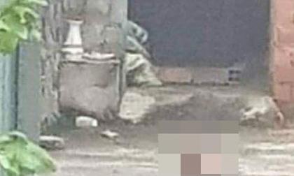 Nóng: Một người đàn ông bị chém lìa đầu ở TP.HCM, công an đang phong tỏa hiện trường