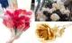 Những bông hoa hồng độc lạ dành tặng 'một nửa' ngày 8/3
