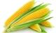 4 lợi ích không ngờ của ngô ngọt