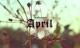 Lời dự báo cực chi tiết cho 12 con giáp trong tháng 4