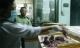 Bắt hai tấn thịt chim cút thối ở Sài Gòn