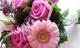 Tử vi cung hoàng đạo thứ ba của bạn (4/8/2015)