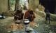 Tầng lớp Dalit ở Ấn Độ: Những con người dưới đáy cùng xã hội