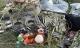 Tìm thấy hài cốt của nạn nhân trong vụ máy bay MH17