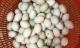 Những thực phẩm và thuốc tuyệt đối không dùng với trứng